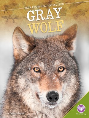 cover image of Gray Wolf