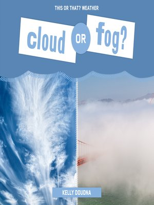 cover image of Cloud or Fog?