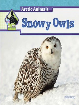 cover image of Snowy Owls