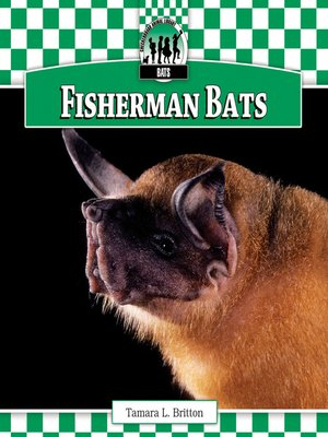 cover image of Fisherman Bats
