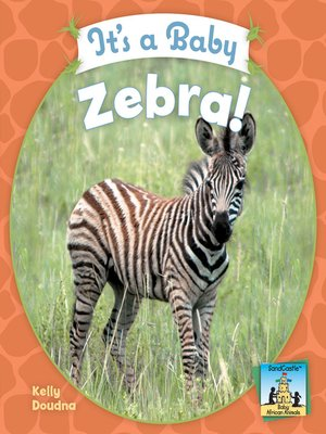 cover image of It's a Baby Zebra!