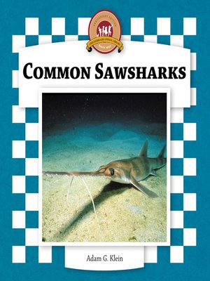 cover image of Common Sawsharks