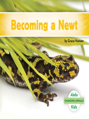cover image of Becoming a Newt