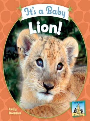 cover image of It's a Baby Lion!