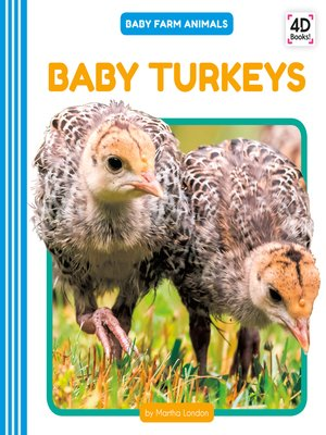 cover image of Baby Turkeys