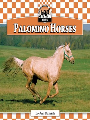 cover image of Palomino Horses