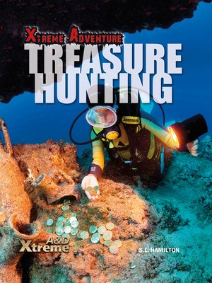 cover image of Treasure Hunting