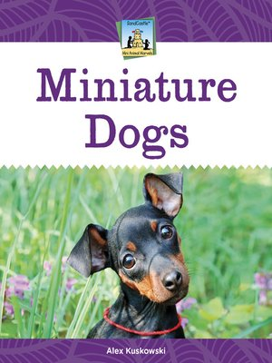 cover image of Miniature Dogs