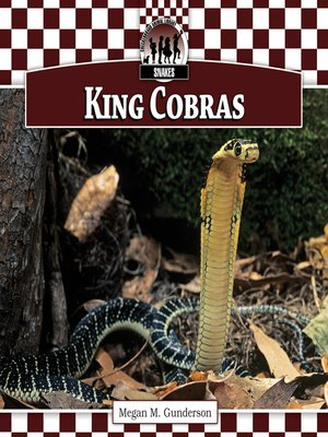 cover image of King Cobras
