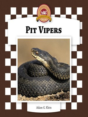 cover image of Pit Vipers