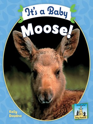 cover image of It's a Baby Moose