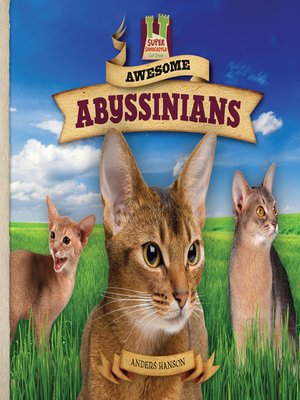cover image of Awesome Abyssinians