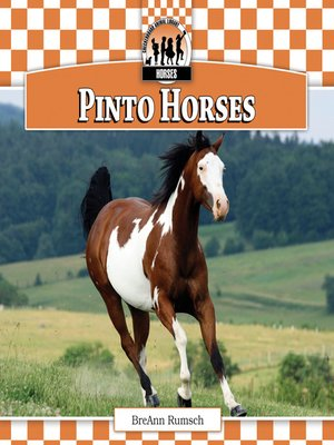 cover image of Pinto Horses