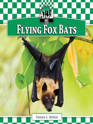 cover image of Flying Fox Bats
