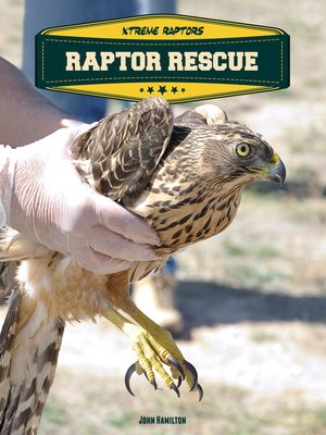 cover image of Raptor Rescue