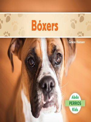 cover image of Bóxers (Boxers)