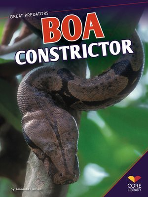 cover image of Boa Constrictor