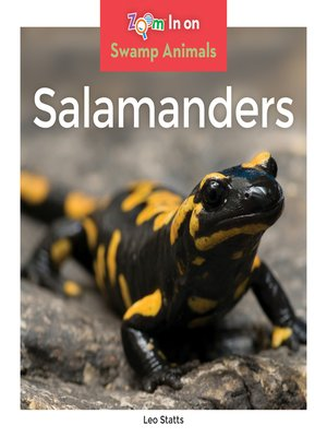 cover image of Salamanders