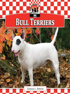 cover image of Bull Terriers