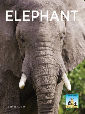 cover image of Elephant