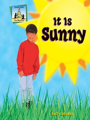 cover image of It Is Sunny