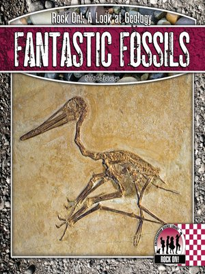 cover image of Fantastic Fossils