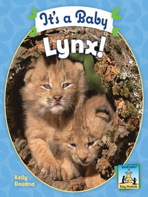 cover image of It's a Baby Lynx