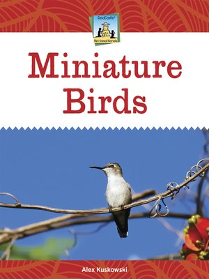 cover image of Miniature Birds