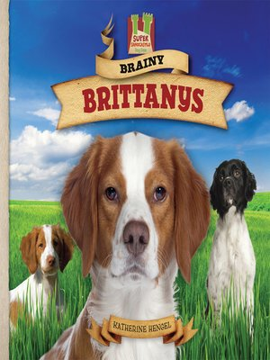 cover image of Brainy Brittanys