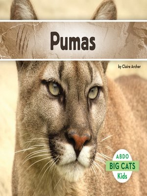 cover image of Pumas