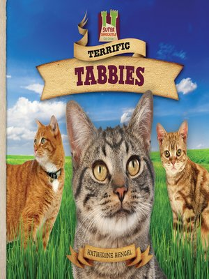 cover image of Terrific Tabbies