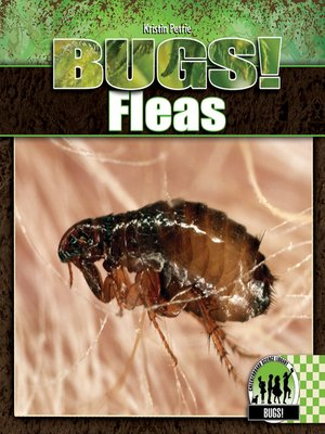cover image of Fleas