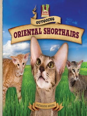 cover image of Outgoing Oriental Shorthairs