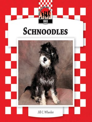 cover image of Schnoodles