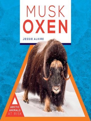 cover image of Musk Oxen