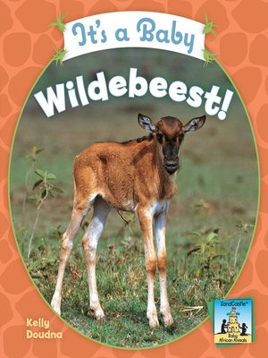 cover image of It's a Baby Wildebeest!