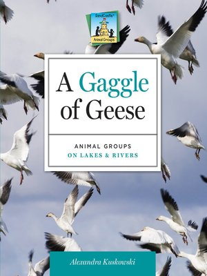 cover image of Gaggle of Geese