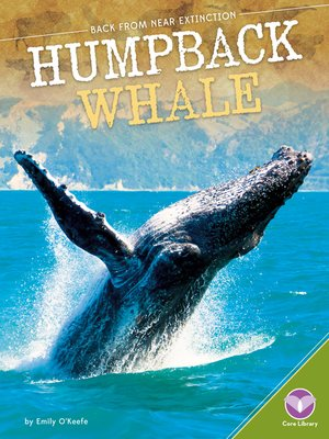 cover image of Humpback Whale