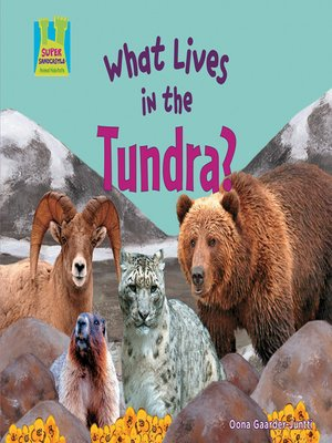 cover image of What Lives in the Tundra?