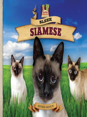 cover image of Sleek Siamese
