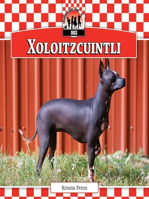 cover image of Xoloitzcuintli