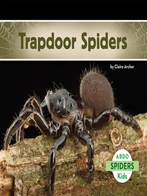 cover image of Trapdoor Spiders