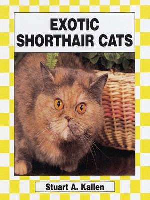 cover image of Exotic Shorthair