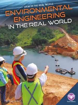 cover image of Environmental Engineering in the Real World
