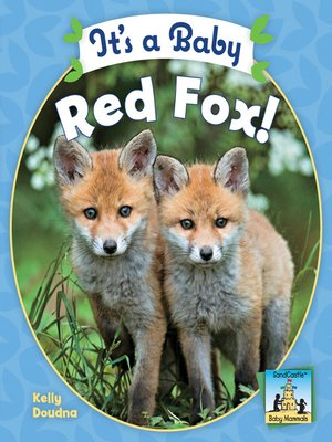cover image of It's a Baby Red Fox