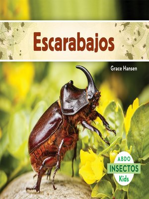 cover image of Escarabajos