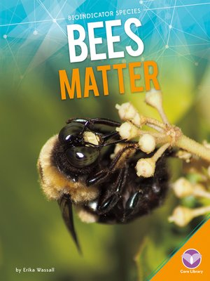 cover image of Bees Matter
