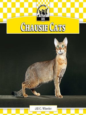 cover image of Chausie Cats