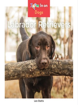 cover image of Labrador Retrievers