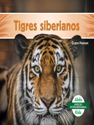 cover image of Tigres siberianos (Siberian Tigers)